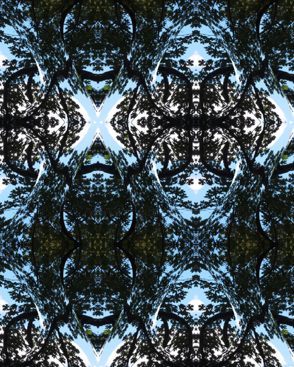 Forest Abstract 68 - Digital Arts, ©2012 by Kenneth Grzesik -                                                                                                                                                                                                                                                                                                                                                                                                                                                                                                                                                                                                                                                                                                                                                                                                                                                                                                                                                                                                                              Abstract Art, Botanic, Geometric, Nature, Patterns, icom, iconic, nature patterns, geometry, symmetry, symmetrical, forest, trees, sky, nature abstract, abstract landscape, kaleidoscopic, modern, contemporary, color image, series, meditation