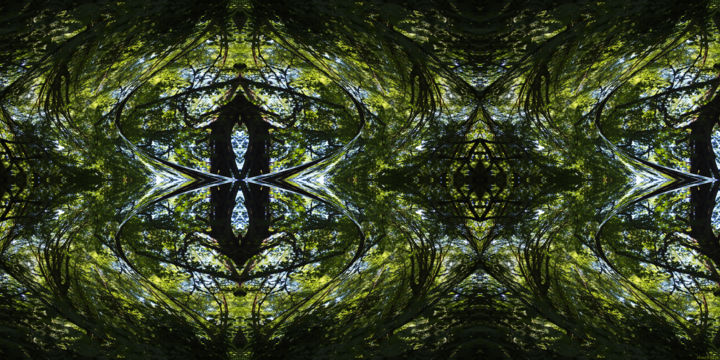 Forest Abstract 69 - Digital Arts, ©2019 by Kenneth Grzesik -                                                                                                                                                                                                                                                                                                                                                                                                                                                                                                                                                                                                                                                                                                                                                                                                                                                                                                                                                                                                                                                  Abstract, abstract-570, Abstract Art, Botanic, Geometric, Nature, Patterns, digital abstract, abstract landscape, nature abstract, series, horizontal, symmetry, symmetrical, kaleidoscopic, trees, forest, green, environment, ambient, foliage, nature patterns
