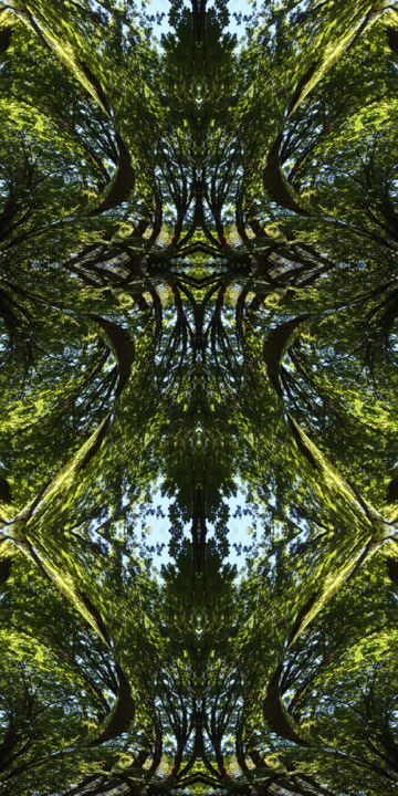 Forest Abstract 70 - Digital Arts, ©2012 by Kenneth Grzesik -                                                                                                                                                                                                                                                                                                                                                                                                                                                                                                                                                                                                                                                                                                                                                                                                                                                                                                                                                                                                                                                                                              Geometric, geometric-572, Geometric, Nature, Patterns, Places, Tree, digital abstract, series, icon, iconic, forest, trees, foliage, green, abstract landscape, nature abstract, symmetry, symmetrical, kaleidoscope, kaleidoscopic, modern, contemporary