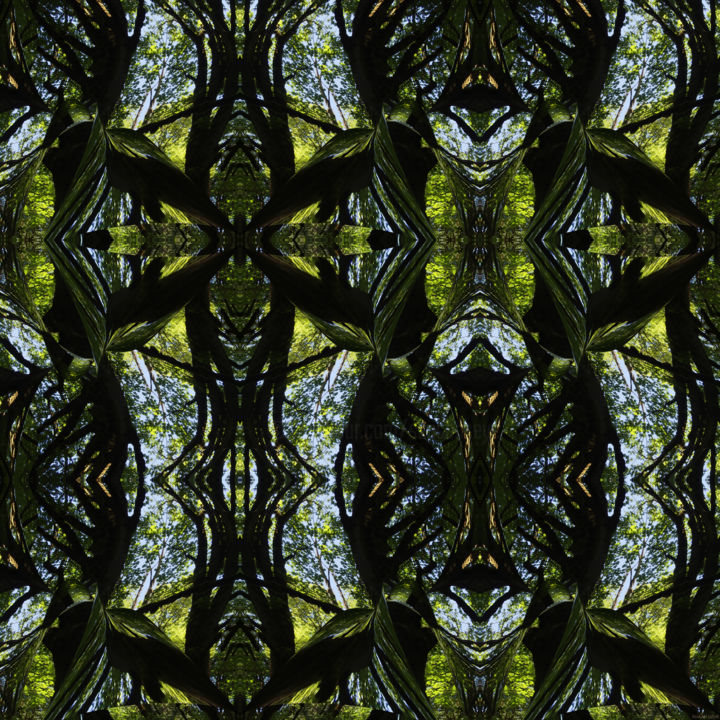 Forest Abstract 73 - Digital Arts, ©2019 by Kenneth Grzesik -                                                                                                                                                                                                                                                                                                                                                                                                                                                                                                                                                                                                                                                                                                                                                                                                                                                                                                                                                                                                                                                                                              Geometric, geometric-572, Geometric, Landscape, Nature, Patterns, Tree, digital abstract, modern, contemporary, abstract landscape, forest, foliage, nature patterns, nature abstract, square, series, icon, iconic, symmetry, symmetrical, kaleidoscopic, organic