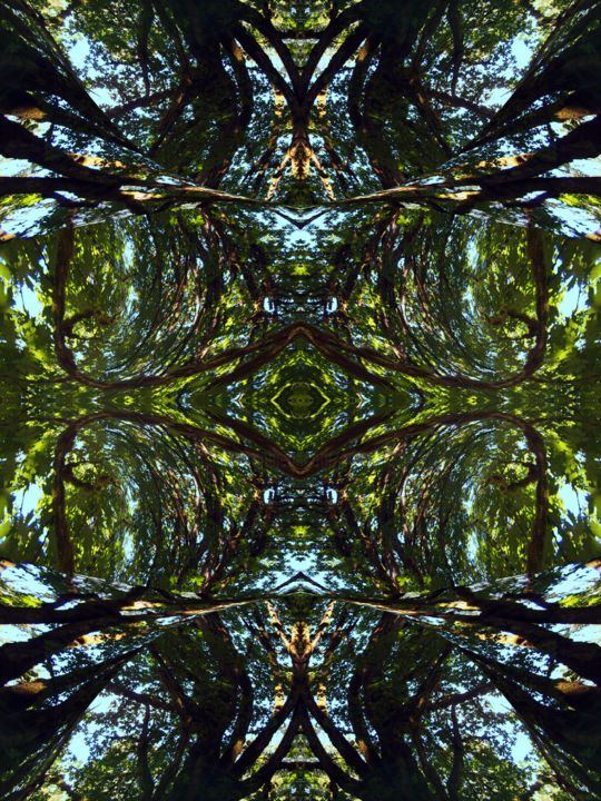 Forest Abstract 75 - Digital Arts, ©2018 by Kenneth Grzesik -                                                                                                                                                                                                                                                                                                                                                                                                                                                                                                                                                                                                                                                                                                                                                                                                                                                                                                                                                                                                      Geometric, geometric-572, Geometric, Nature, Patterns, Tree, Abstract Art, digital abstract, series, abstract landscape, forest, trees, symmetry, symmetrical, kaleidoscopic design, nature patterns, green, environment, nature image, iconic, nature icon