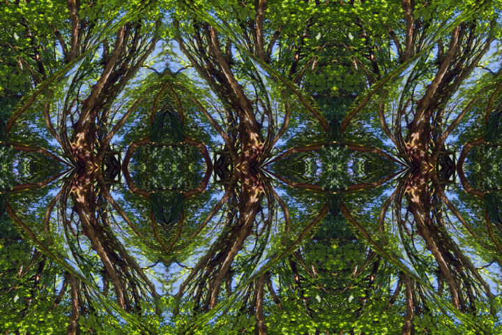 Forest Abstract 76 - Digital Arts, ©2019 by Kenneth Grzesik -                                                                                                                                                                                                                                                                                                                                                                                                                                                                                                                                                                                                                                                                                                                                                                                                                                                                                                                                                                                                                                                                                                                                          Abstract, abstract-570, Geometric, Landscape, Nature, Patterns, Places, digital abstract, series, icon, iconic, symmetry, symmetrical, abstract landscape, nature abstract, kaleidoscopic, kaleidoscopic art, geometric, horizontal, modern, contemporary, forest, trees, foliage