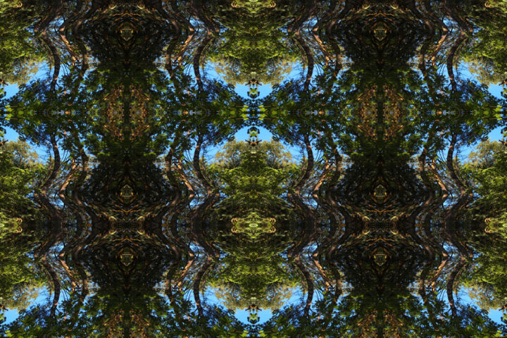 Forest Abstract 80 - Digital Arts, ©2019 by Kenneth Grzesik -                                                                                                                                                                                                                                                                                                                                                                                                                                                                                                                                                                                                                                                                                                                                                                                                                                                                                                                                                                                                                                                  Abstract, abstract-570, Abstract Art, Geometric, Landscape, Nature, Patterns, digital abstract, abstract landscape, forest, trees, green, blue, nature, symmetry, symmetrical, kaleidoscopic art, kaleidoscope image, series, icon, iconic, organic