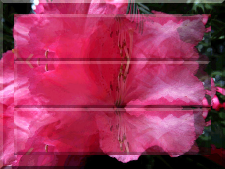 Garden View 22 - © 2020 digital abstract, modern art, contemporary art, series, art deco, neo deco, techno deco, digital deco, floral art, red, organic design, digital design, horizontal image, spring flower Online Artworks
