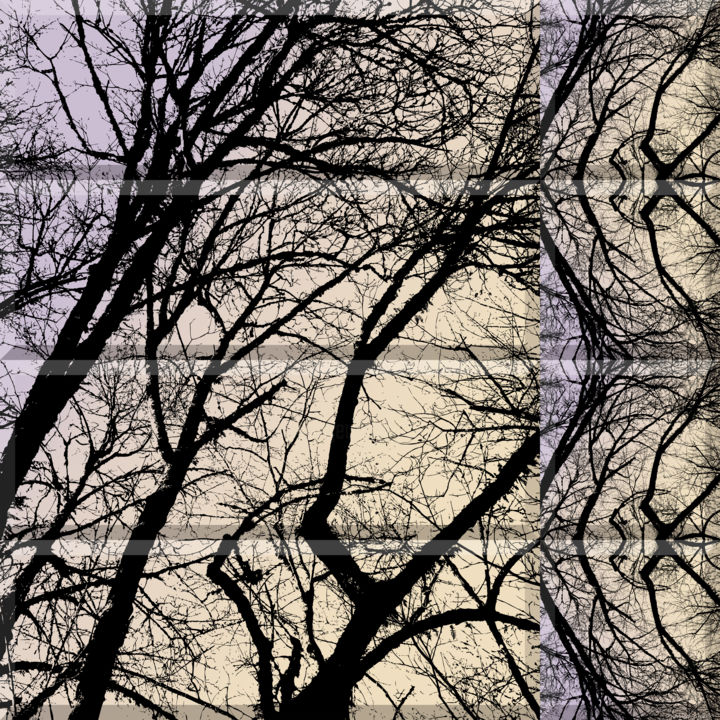 Wintry Forest 4 - Digital Arts, ©2020 by Kenneth Grzesik -                                                                                                                                                                                                                                                                                                                                                                                                                                                                                                                                                                                                                                                                                                                                                                                                                                                                                                          Abstract, abstract-570, digital abstract, series, forest, trees, winter, symmetry, patterns, kaleidoscopic, geometry, geometric, vector, square, digital photography, new media, seasons, enviromment, winter time