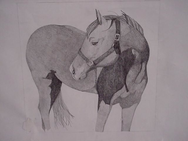 Royal Hot Gal, AQHA - Drawing, ©2004 by Shannon Young -