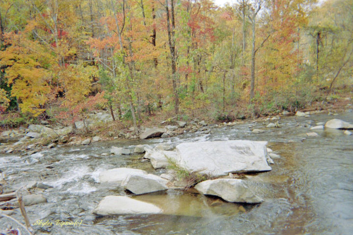 Peaceful Chimney Rock Creek - Photography, ©2007 by Skyler -                                                                                                                                                                                                                                                                                                                                                                                                                                                                                                                      Chimney Rock forest, Western North Carolina woods, huge creek rocks, flowing pure water, water over rocks, creek rocks, red trees, forests, Chimney Rock photography, deep in woods, mountain scenery
