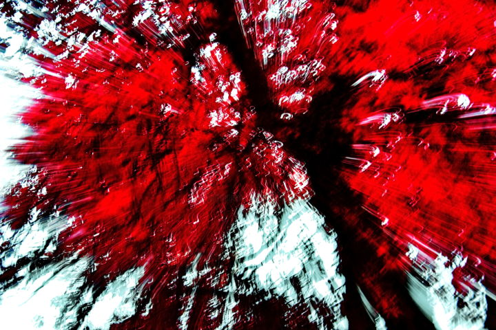 Red Life Explosion - Photographie,  50x75x4 cm ©2019 par Steevens Hill -                                                                                                                                                            Art abstrait, Autre, Bois, Coton, Papier, Arbre, Art abstrait, Couleurs, Lumière, Sciences et Technologies, Spiritualité, photo infrarouge, infrared photography, ig photo, arbre, tree, abstraction lyrique, saatchi, artsy_shark, healing power of arts, explosion, architecture intérieure, steevens hill art, lumière, light, life, vie, matière, matter, cell, céllule, paintography, peintographie
