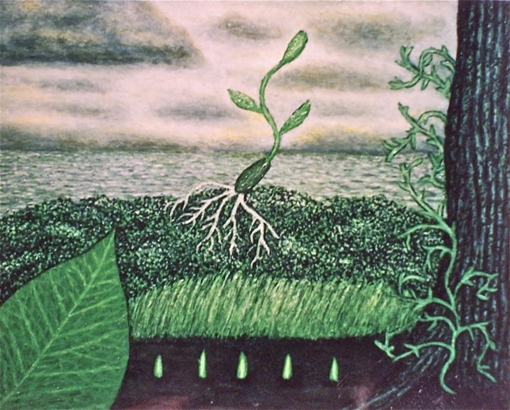 Germination - Painting,  20x16 in ©2003 by Stephen Warde Anderson -                                                                        Naive Art, Other, Botanic, Landscape, seeds, vegetation