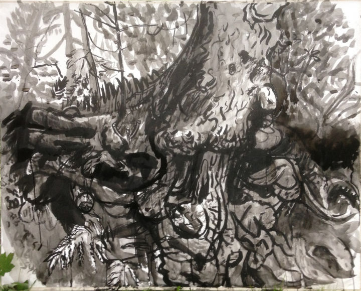 Large Roots Drawing - Drawing,  48x60.6x15.8 in, ©2016 by Stephen West -                                                                                                                                                                                                                                                                                                                                                                                                                                                                                                      Figurative, figurative-594, Canvas, Paper, Black and White, Landscape, Tree, ink, tree, plein-aire