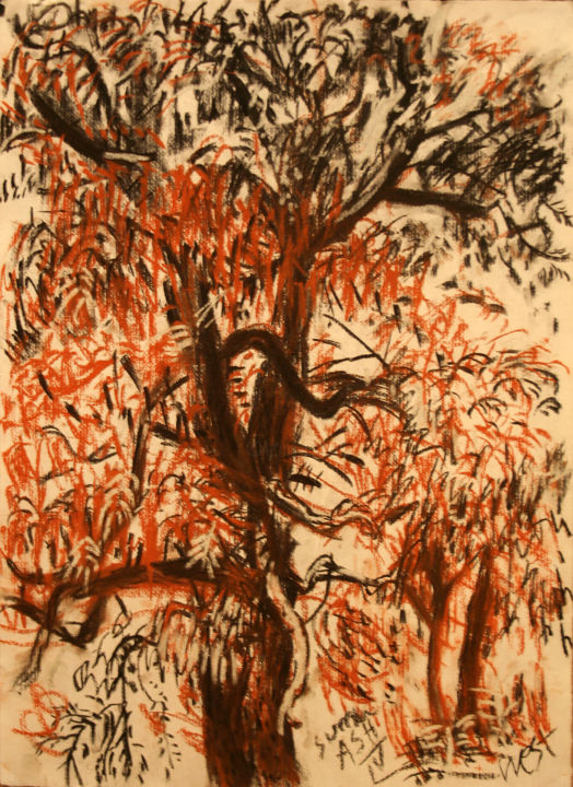 summer-ash-4-medium.jpg - Drawing,  110x80x35 cm ©2014 by Stephen West -                                                                                                Figurative Art, Impressionism, Paper, Landscape, Nature, Tree, tree, chalk, ash, charcoal, drawing, gestural, nature, green