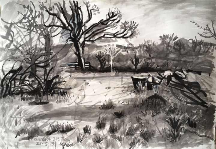 Overcast Dolpebyll - Drawing,  27.2x39.4x0.1 in, ©2011 by Stephen West -                                                                                                                                                                                                                                                                                                                                                                                                                                                                              Black and White, Landscape, Nature, Rural life, Tree, tree, landscape, ink, black & white, drawing