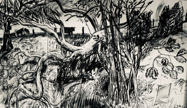 """Drawing titled """"Fallen Ash 3"""" by Stephen West, Original Art, Charcoal"""