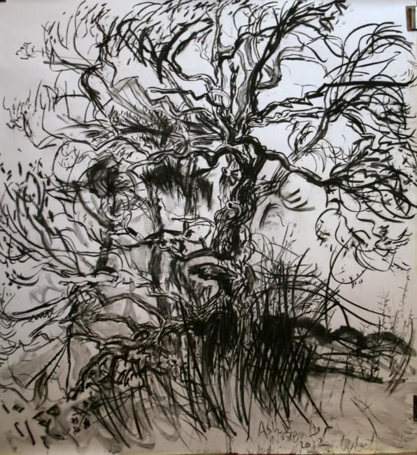 Ash V - Drawing,  120x127.5 cm ©2012 by Stephen West -                            Black and White, Ash Tree and pines
