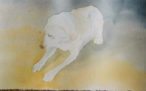 """Painting titled """"Water color of a ye…"""" by Steven Hawke, Original Art,"""