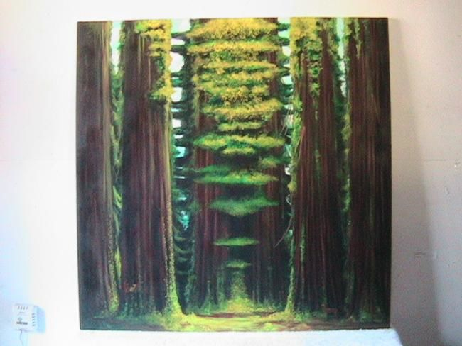 Clearing - Painting,  36x36 in ©2009 by Stuart C Foster -                            Figurative Art, Redwood Trees in oil on canvas
