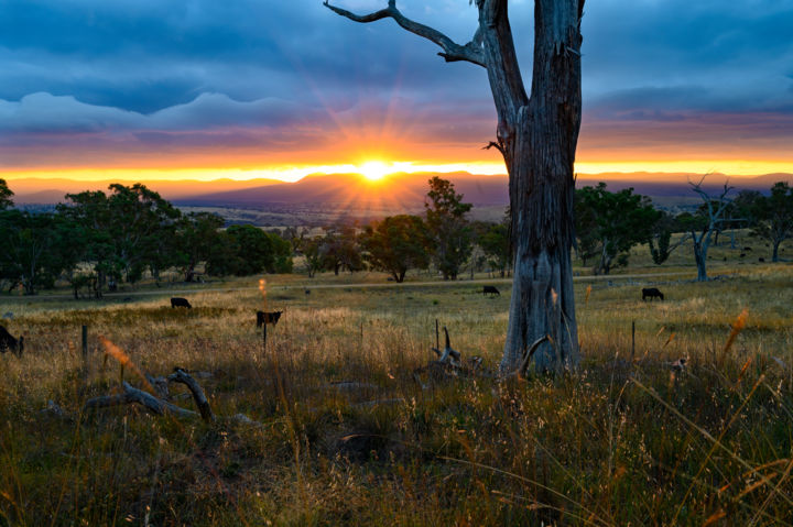 """Photography titled """"Sunset over the Bri…"""" by Stuart Row, Original Art,"""