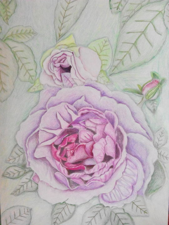 """Drawing titled """"Wild n' Gentle"""" by Sunshine Amos, Original Art, Pencil"""