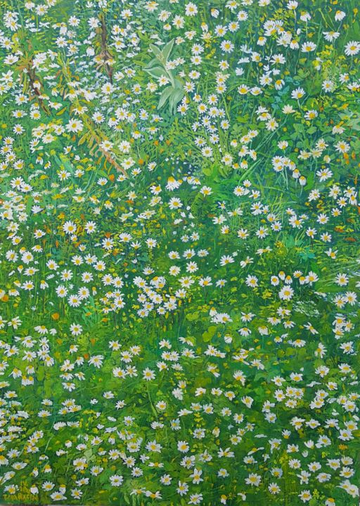 Daisies by Orsula I - © 2016 Daisies, Meadow, Flowers, Green, White, Nature, Spring Online Artworks