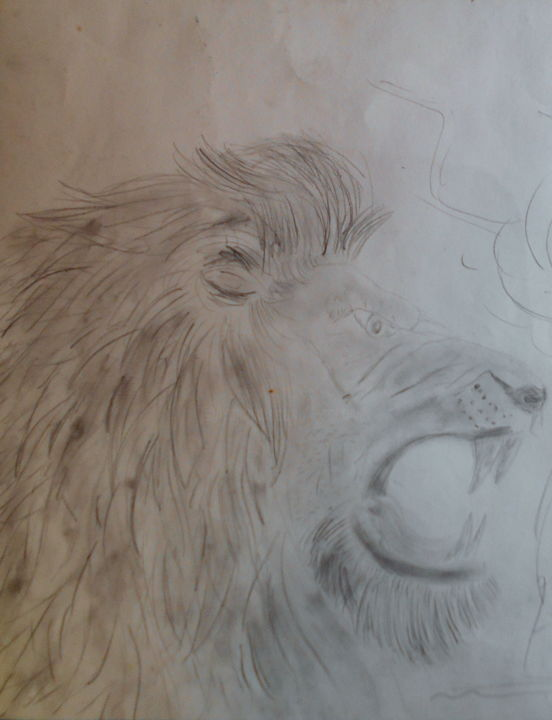 lion - Drawing,  25.6x20.9 in, ©2018 by Tom Schrijver -                                                              Animals