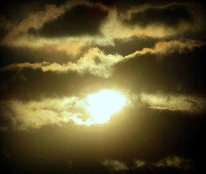 sun comes through - Photography, ©2020 by Tom Schrijver -