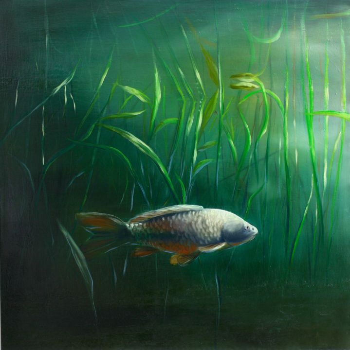 Karper - Painting,  35.4x35.4x0.8 in, ©2014 by Tamas -                                                                                                                                                                                                                                                                                                                                                          Figurative, figurative-594, Animals, Landscape, Light, Fish, Water