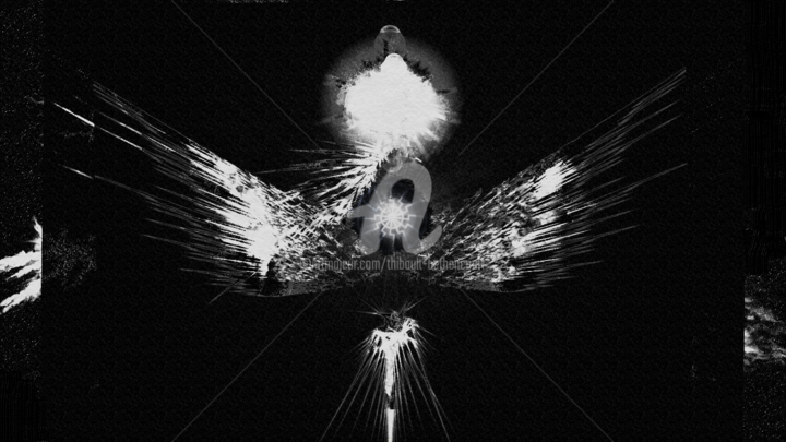 Projet Phoenix - Digital Arts ©2019 by Thibaut BÉTHENCOURT -                                                                        Animals, Outer Space, Light, Black and White, Science & Technology