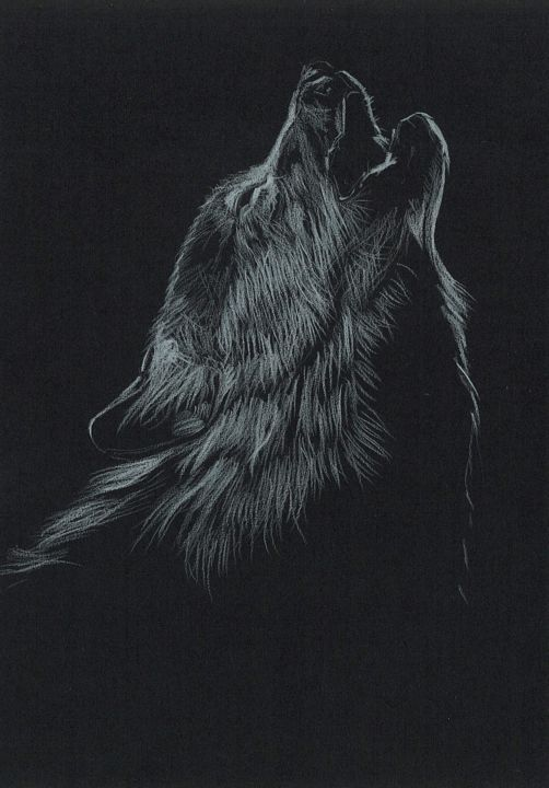 LOUP - Drawing,  7.1x5.5 in, ©2020 by Thibaut Dapoigny -                                                                                                                                                                                                                                                                                                                                                                                                                                                                                                                                                                                                                                                                                                                              Illustration, illustration-600, Animals, Nature, animal, animals, animaux, nature, loup, loups, wolf, wolves, wildlife, dessin, drawing