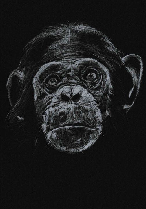 THIS IS ME - Drawing,  7.1x5.5 in, ©2020 by Thibaut Dapoigny -                                                                                                                                                                                                                                                                                                                                                          Figurative, figurative-594, animal, wildlife, singe, monkey, chimpanzee