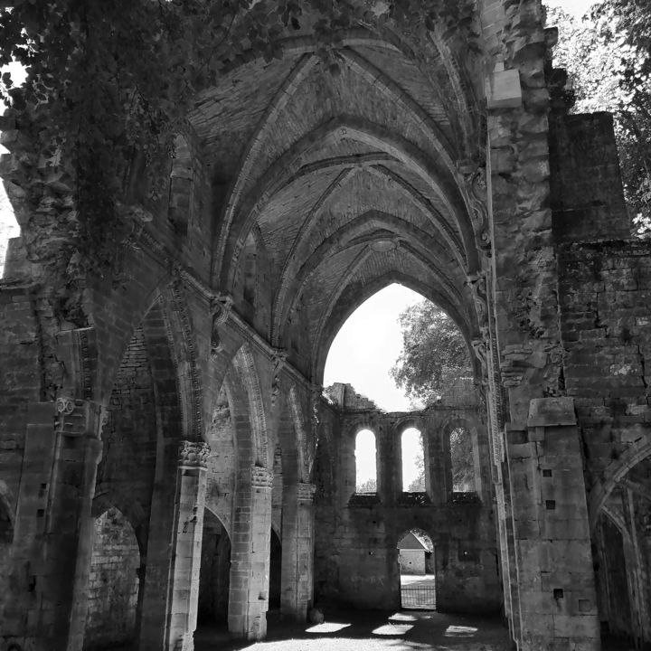 Ruines abbatiale. - Photography, ©2019 by Thierry Bressan -