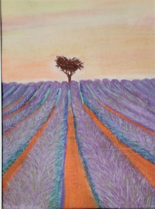 """Painting titled """"Lone Tree in Lavend…"""" by Thomas Patchell, Original Art, Pastel"""