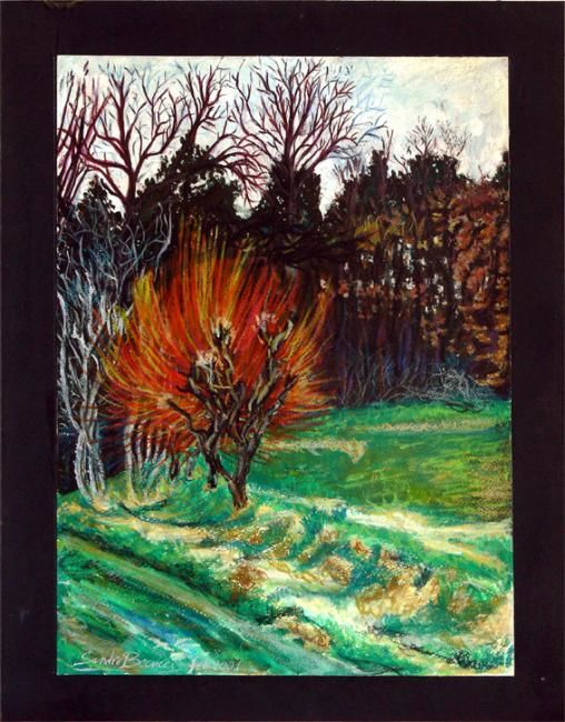 BOSCO DI TAVARNELLE - Painting,  18.1x13.4x0.4 in, ©2002 by Tolemaios -                                                              Tavarnelle's forest in a cloudy day of fall