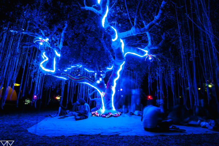 """Photography titled """"Tree LightYear"""" by Tomás Vieira, Original Art, Digital Photography"""
