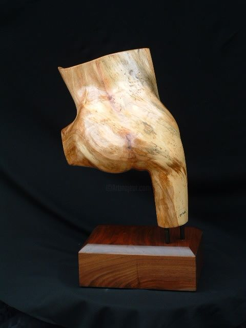 Dancer - Sculpture,  21x14 in, ©2009 by Diane Tremaine -                                                                                                                                                              Wood, Body, Sculpture of dancer's body leaping