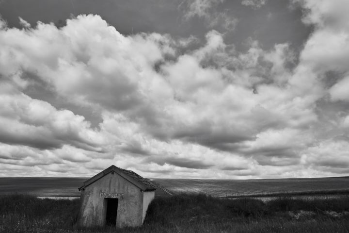 Champagne / France - Photography ©2017 by Ulli Heupel -                                                                                                        Documentary, Photorealism, Land Art, Realism, Rural life, Landscape, Agriculture, Champagne, Wolken, Stimmung