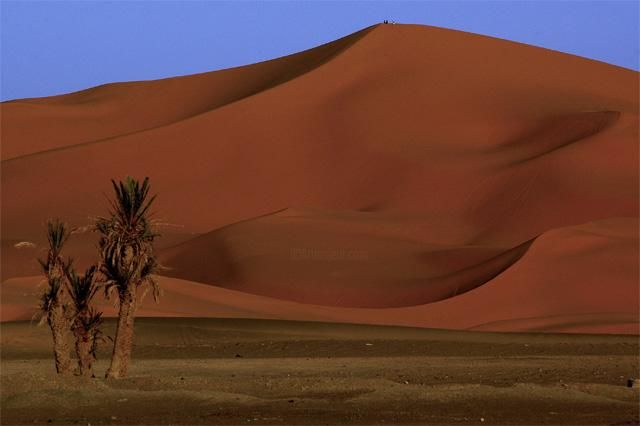 dune Merzouga - Photography, ©2005 by Loïc Auberger -