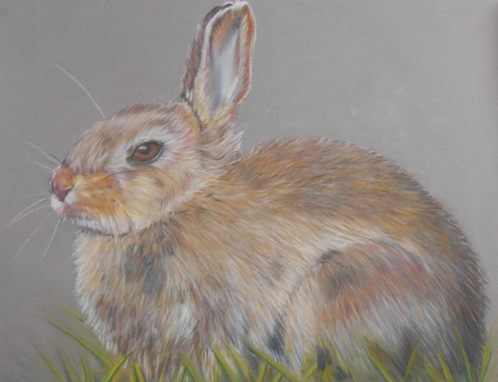 Mr lapin se repose - Pastel - Painting,  24x18 cm ©2014 by Valérie Jouffroy Ricotta -                                                            Illustration, Paper, Animals, lapin, animaux, pastel, illustration