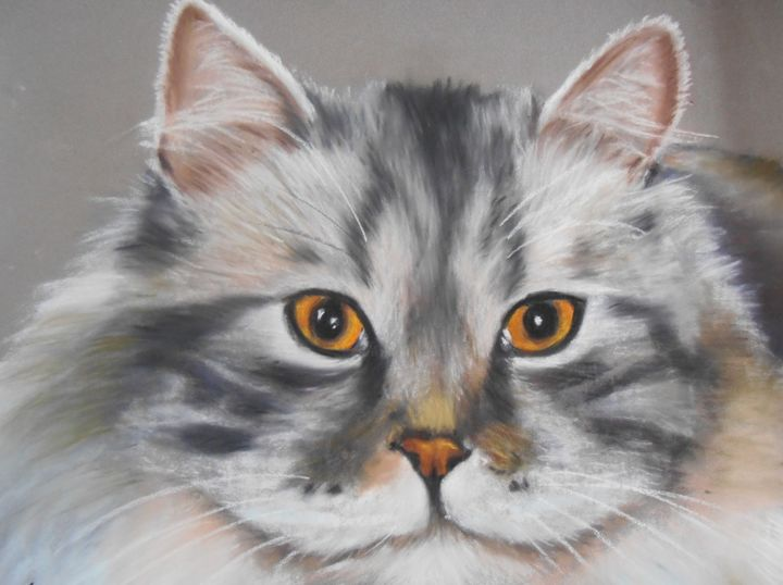 Le chat - Pastel - Painting ©2008 by Valérie Jouffroy Ricotta -                                                            Illustration, Paper, Animals, félin, animalier, pastel sec