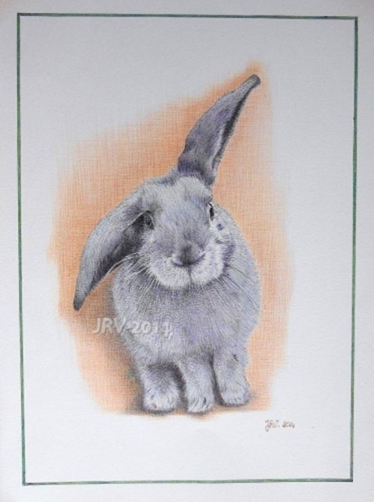Marty le lapin - Stylo bille - Drawing,  24x32 cm ©2014 by Valérie Jouffroy Ricotta -                                                            Illustration, Paper, Animals, lapin, animaux, stylo bille