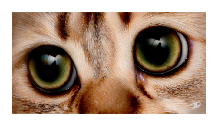 Dreaming - Painting ©2014 by NesDesign -                                        Photorealism, Cats