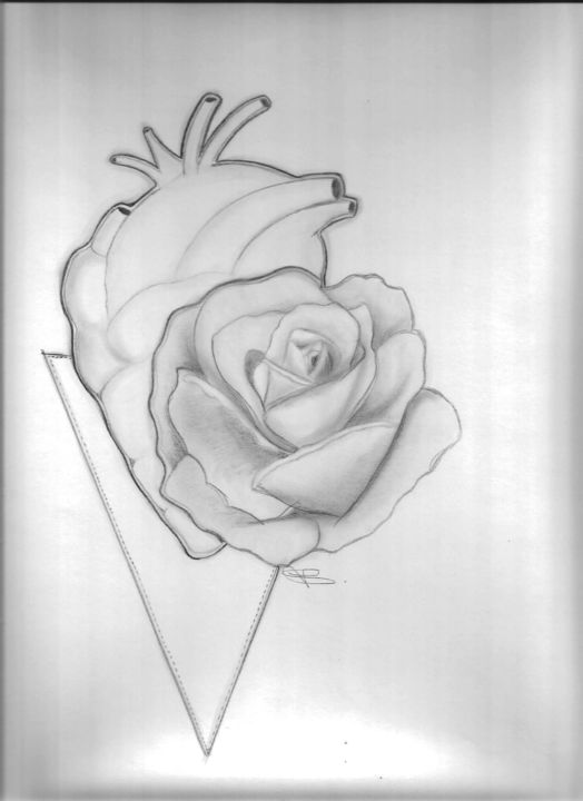Heart Rose Drawing By Victoriaalx Artmajeur