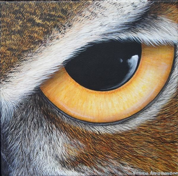 All Eyes On Us - Great Horned Owl - Painting,  12x12 in, ©2011 by Victoria Armstrong -                                                                                                                          Figurative, figurative-594