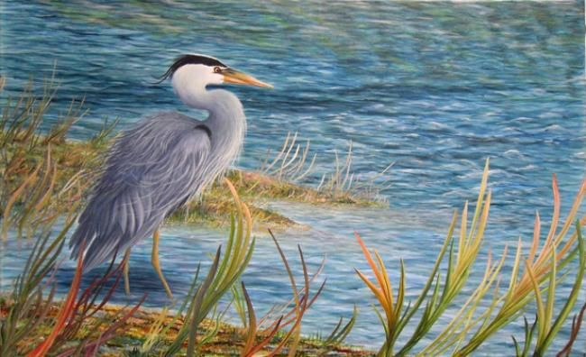 Catching The Wind - Painting,  30x48 in, ©2012 by Victoria Armstrong -                                                              Great Blue Heron on prairie wetlands on a windy day
