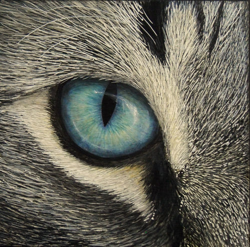 "Vignettes - ""Bianca"" - Painting,  6x6x2 cm ©2016 by Victoria Armstrong -                                                            Realism, Wood, Animals, cat, cats, eye, eyes, close up, cat's eye, painting, acrylic, blue eye, blue eyes"