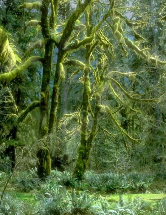 """Painting titled """"Green Moss and Emer…"""" by Robert Anthony, Original Art, Other"""