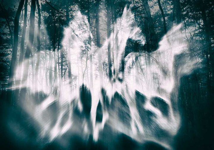 """Photography titled """"Forest Ghosts"""" by Vitomirov, Original Art, Digital Photography"""
