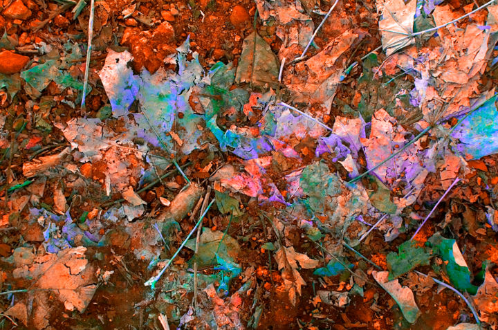 """Photography titled """"22.12.13"""" by Bill Karrow, Original Art, Other"""