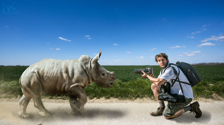 Le bébé rhino - Photography,  40x60x2 cm ©2017 by Xavier WTTRWULGHE -                                                                                                                                                            Illustration, Realism, Surrealism, Aluminum, Other, Animals, Cinema, Colors, Fantasy, Men, Light, rhino, rhinoceros, bébé, animal, sauvage, wild, photographe, action, illustration
