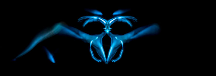 Orchidia - Photography,  100x30 cm ©2015 by Yoann Carnoy -                                                                                Surrealism, Symbolism, Body, Light, Nude, Orchidia, orchidée, orchid, fleur, flower, bassin, pelvis, rayon x, x ray, dark vador, darth vader, abstract, abstraction, abstrait, bleu, blue, noir, black, fond noir, black background, main, mains, hand, hands, yocarnoy, yoann carnoy, carnoy, light painting, lightpainting, light art, light painter, light brush, photo, photograph, photographer, photographie, pose longue, long exposure, canon, studio, surréalisme, symbolism, symbolisme, paysage, format italienne, corps, body