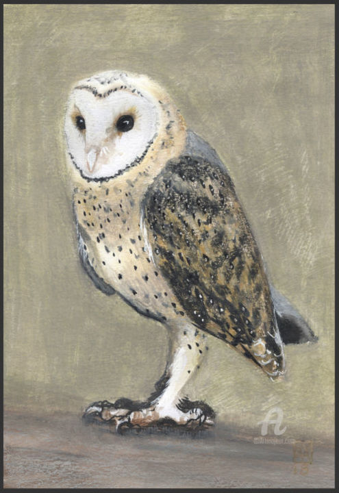 Dame blanche - Painting,  7.1x5.1 in, ©2018 by Castel Yvonne -                                                                                                                                                                                                                                                                                                                                                                                                                                                                                                                                                                                                                                                                                                                                                                          Figurative, figurative-594, Birds, oiseau, dame blanche, owl, barn owl, chouette, hibou, nocturne, animal, crayons cire, neocolors, aquarellable, beige, gris